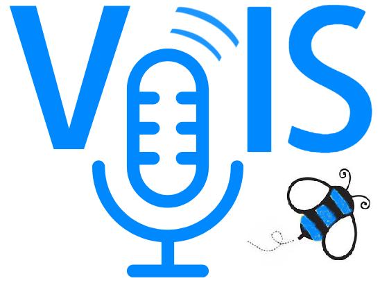 VoisBuzz Logo